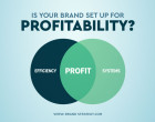 Brand Profitability Systems: Crucial Considerations